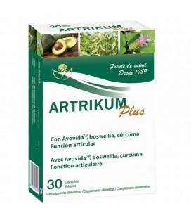 Artrikum plus 30 cápsulas.