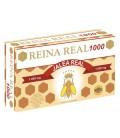 REINA REAL 1000 20 AMP 10ML