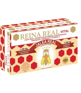 REINA REAL VITAL 30 AMP 10MG