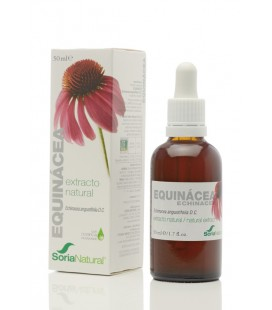 EXTRACTO DE EQUINACEA S.XXI 50 ML