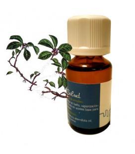 Aceite esencial 'wintergreen'