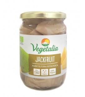 Jackfruit ecologico bote vidrio 500 gr