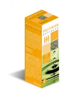 Equinacea extracto 50 ml